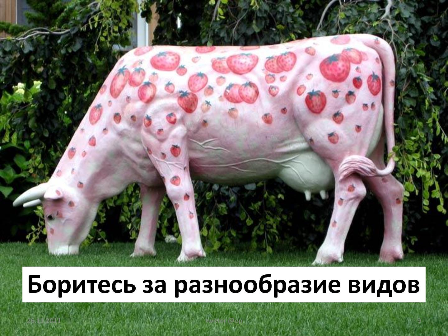 Cows dick pictures erotic movies